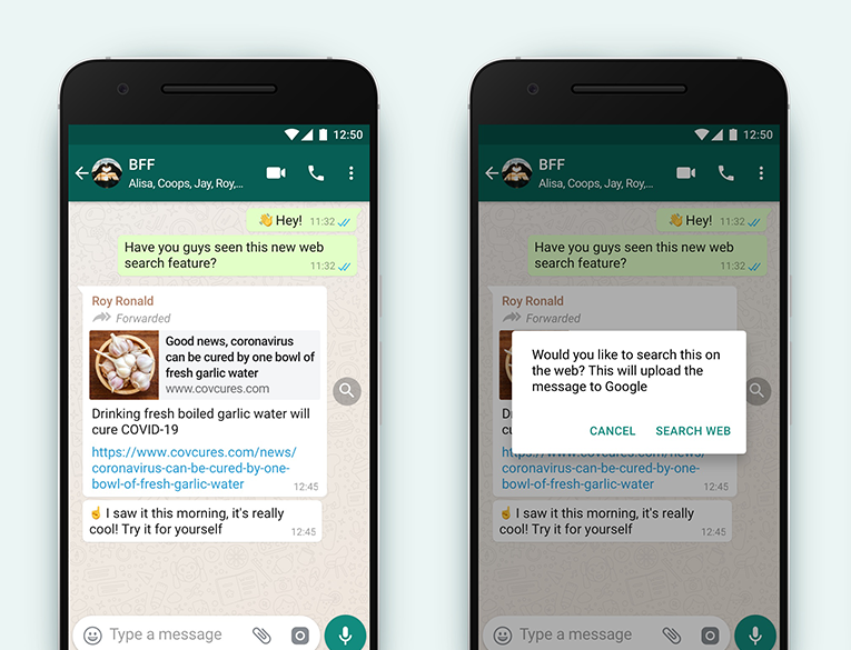 Search the Web feature WhatsApp