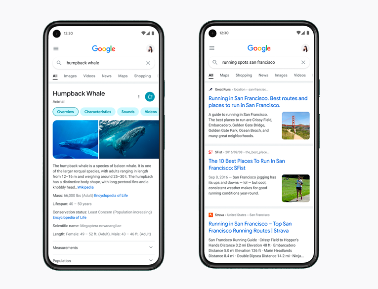 The new Search interface and snippets of Google