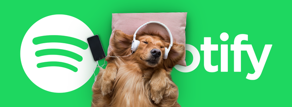 Spotify Introduces Pet Playlists to Make Your Doggo Happy