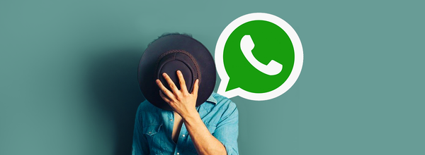 How to Remain Incognito When Chatting in WhatsApp: Ways of Sending Messages Without Showing Online